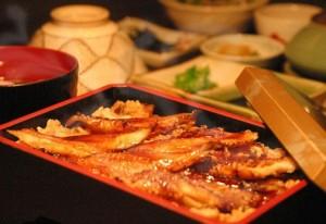 姫路市のおすすめグルメ あなご料理 柊